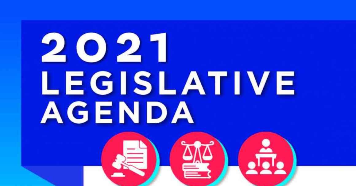 2021 ACLU Hawaii Legislative Agenda